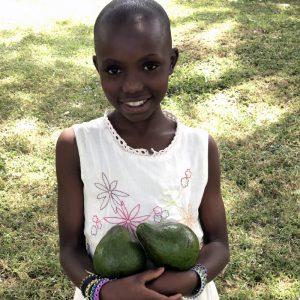 Mali dom - Supermarket dobrote - Avokado