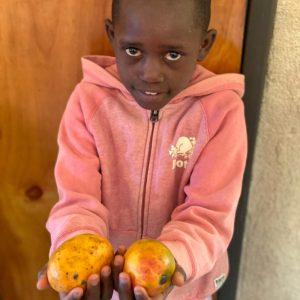 Supermarket dobrote - Mali dom - Mango